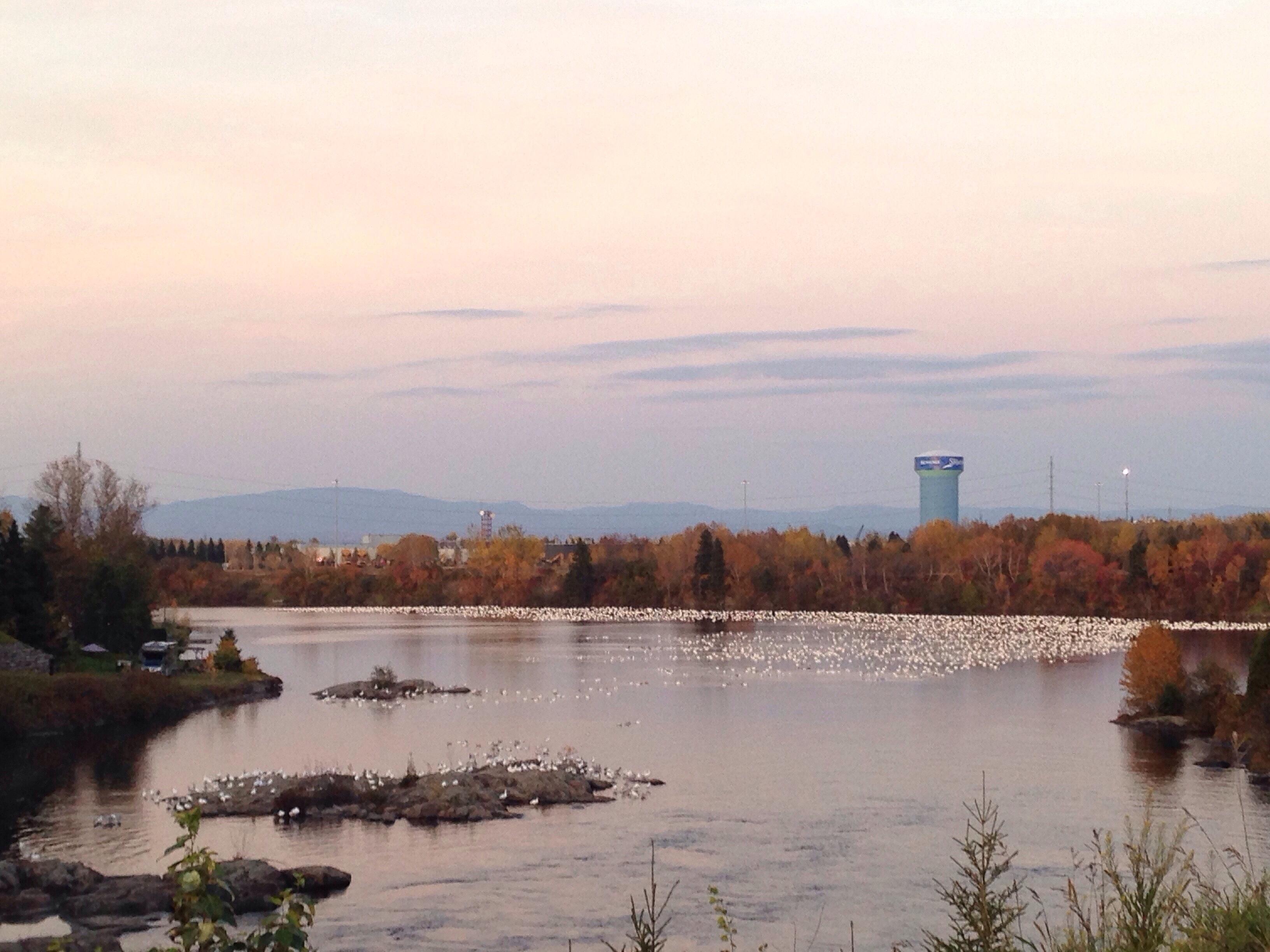 Site de rencontre saguenay lac-saint-jean