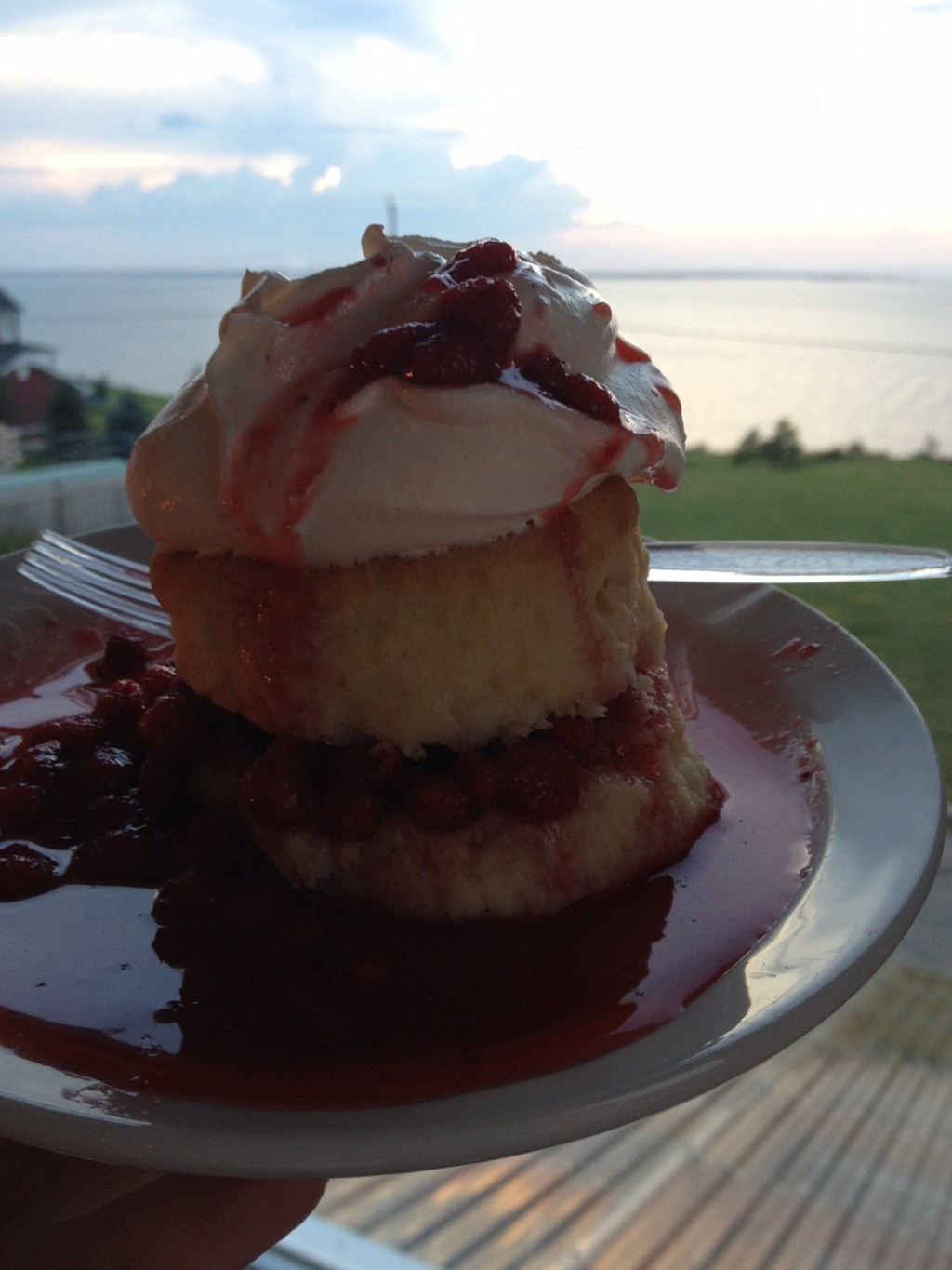 PHOTO6_SHORTCAKEFRAISES